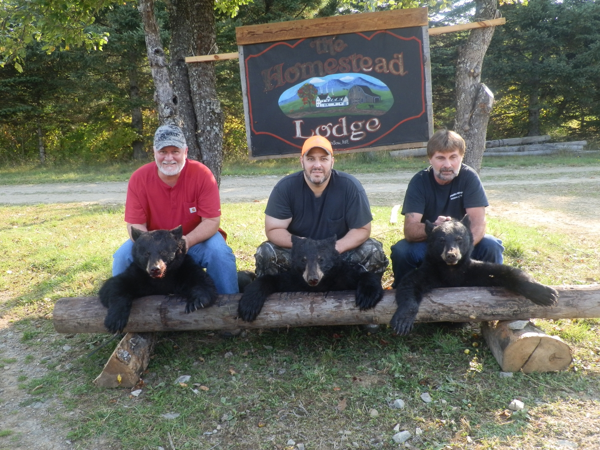 A Tradition of Maine Bear Hunting Excellence